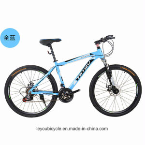High Quality Cheap Carbon Mountain Cycle (ly-a-17) pictures & photos