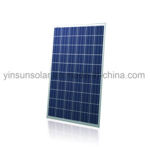 300W Poly Solar Panel for PV System pictures & photos