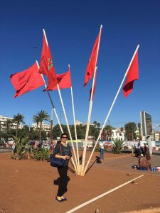 Custom Waterproof and Sunproof National Flag Morocco National Flag Model No.: NF-060 pictures & photos