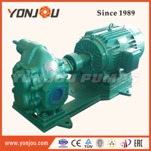 Fuel Delivery Pump, Lubrication Gear Oil Pump, Low Pressure Pump (KCB 2CY) pictures & photos