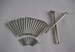 Q195/Q235 Polished Common Nail, Iron Wire Nail pictures & photos