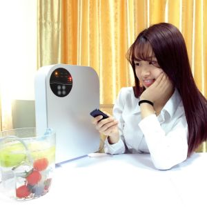 Sterhen Portable Ozone Generator 220V Air Purifier with Air Compressor pictures & photos