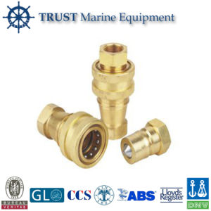 Kzd Brass Hydraulic Male&Female Quick Coupling/ Quick Connector for Hose pictures & photos