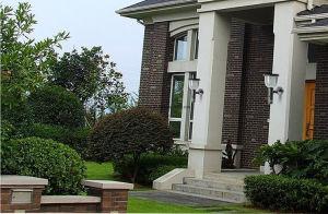 Motion Detecting Home Security Outdoor Garden Light Weatherproof Solar Power 39 IR CCTV DVR Camera Video Recorder pictures & photos