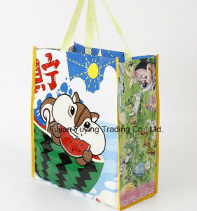 PP Fabric Handle Bag with Customized Pringting pictures & photos