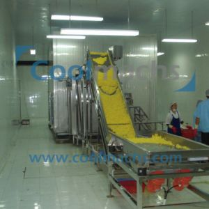 Pineapple Processing Machine Frozen Fruit Production Line Freezing Food Process Line pictures & photos
