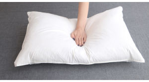 Luxury High Quality White Goose Down Pillow for Good Sleeping pictures & photos