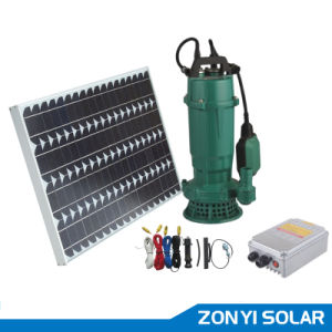 DC 48V Solar Swimming Pump for Irrigation with Cable Controler pictures & photos