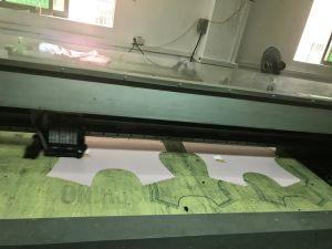 Fd1628 Long Belt Inkjet Printer for Cotton Fabrics Direct Printing pictures & photos