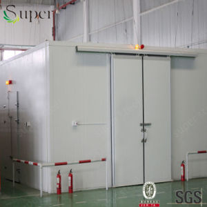 Hot Sale Cold Room for Potato and Vegetables pictures & photos