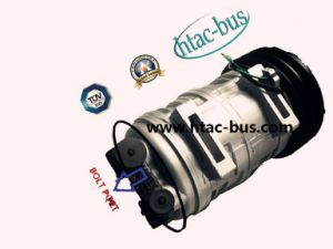 Heavy Duty A/C Valeo TM21 Compressor 215cc pictures & photos