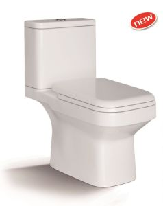 1211A Washdown Two Piece Toilet with PP Slow Down Seat Cover pictures & photos