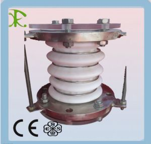 PTFE Expansion Joint pictures & photos