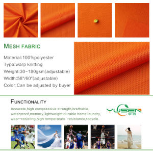 Polyester Mesh Fabric pictures & photos