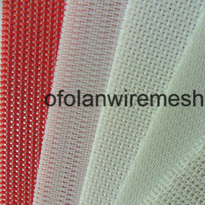 Monofilament Polyester Weave Mesh Belt Screen for Drying pictures & photos