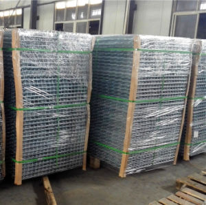 Welded Wire Mesh with Hot DIP Galvanized pictures & photos