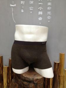 Men Underwears Men Boxers 009 pictures & photos