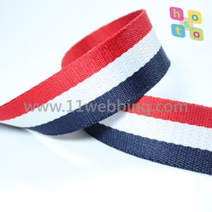 Hot Sell Binary Colour Polyester Webbing for Bgas\Clothing Accessories pictures & photos