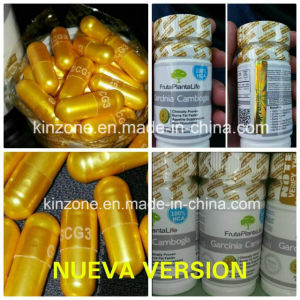 Garcinia Cambogia Gcg3 95% Hca Capsules Natural Extreme Diet Weight Loss pictures & photos