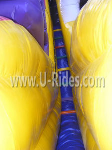 Giant Dragon Inflatable Slide for Park pictures & photos