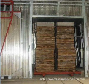 Thermally Modified Wood Kiln (hot oil heating, FW-T30)
