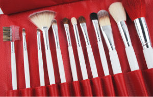 12 Pieces Cosmetic Tool Animal Hair Makeup Artist Brushes with Sexy Floral Bag pictures & photos