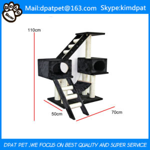 Wholesales China Market Pet Accessories From Dapt Factory pictures & photos