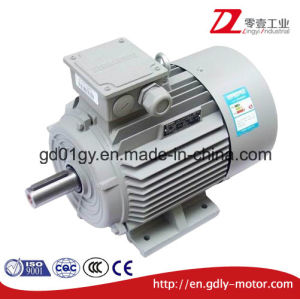 Siemens High Efficiency 3 Phase Induction AC Motors pictures & photos