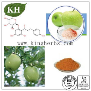 High Natural Polyphenols 50%, 70%, 75%, 80% Apple Extract pictures & photos
