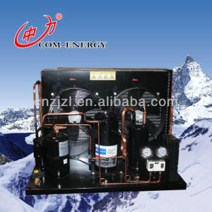 Zl Serials Air-Cooled Condensing Unit pictures & photos