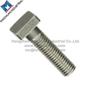Carbon Steel, Stainless Steel/Square/ T Head Bolt with Hex Nut and Washer pictures & photos