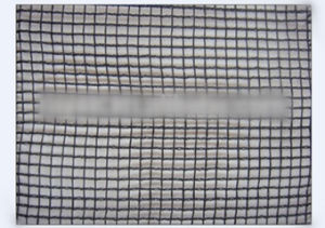 Grape Orchard Anti Hail Net Hail Guard Net pictures & photos