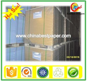 Printing Paper in Dubai Wood Free Offset Printing Paper pictures & photos