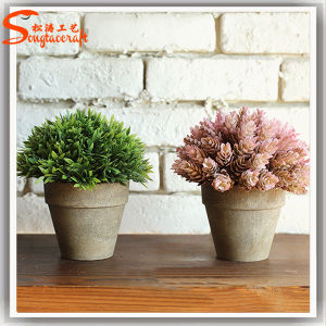 Professional Manufacturer Artificial Mini Bonsai Plant pictures & photos