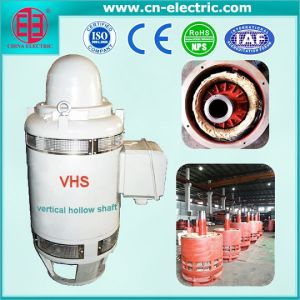Vhs Series Vertical Hollow Shaft AC Induction Motor pictures & photos