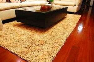 100%Polyester Chenille High Quality Floor Bath Rug pictures & photos