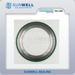 316 (L) Graphite Cgi Spiral Wound Gaskets with Inner and Outer Ring (SUNWELL) pictures & photos