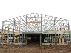 Light Steel Structure Chicken House From China pictures & photos