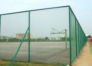 PVC Coated Black Used Chain Link Fence Panels for Baseball Fields 2016 Hot Sale pictures & photos