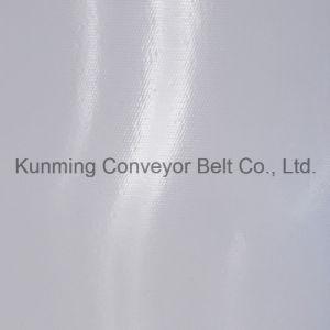Conveyor Belt PVC (EM120/2: 0+1.0/3.0W) pictures & photos