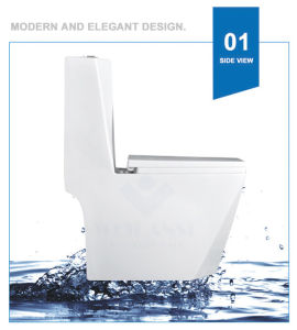 Weidansi Ceramic Wash Down S-Trap One Piece Toilet (WDS-T6104) pictures & photos