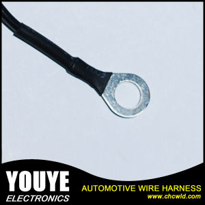 Toyota T Type Automotive Cable Harness pictures & photos