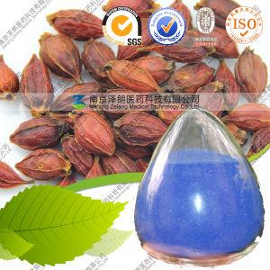Food Extract E30-E200 80 Mesh Gardenia Blue Powder pictures & photos