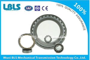 Cylindrical Roller Bearings (NN3005-NN3022)