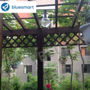 Solar Outdoor LED Garden Light with Smart Remote Control pictures & photos