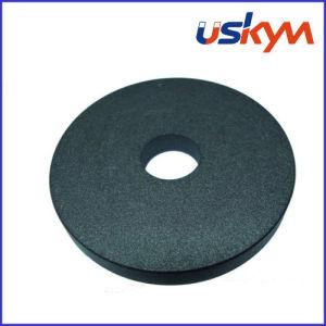 Teflon NdFeB Magnet Neodymium Magnet Ring Magnet pictures & photos
