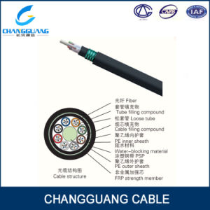 Underground/Ug 6 Core Single Mode Fiber Optic Cable Harsh Environment Use GYFTY53