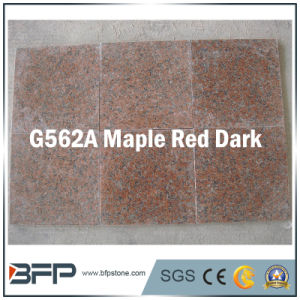 Polished Natural Granite Stone Floor Tile for Flooring / Wall pictures & photos