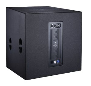 21inch Bin Sub Woofer+Sub-Bass System+Audio Sound System pictures & photos