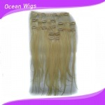 Hot Selling Brazilian Clip in Hair Extension (CH-008) pictures & photos